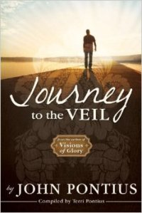 Journey to the Veil Cover